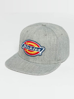 Dickies Snapback Caps Muldoon harmaa