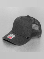 Djinns trucker cap Cut & Sew High Fitted grijs