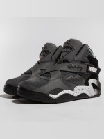 Ewing Athletics Sneakers Athletics Rogue grå