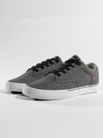 Globe Sneakers Tribe gray