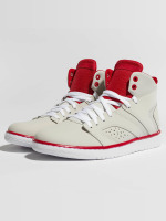 Jordan Sneakers Flight Legend grey