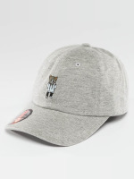 Just Rhyse Casquette Snapback & Strapback Cat gris