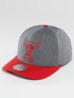 Mitchell & Ness Snapback Caps NBA Link Flexfit 110 Chicago Bulls grå