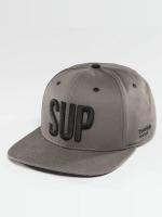TrueSpin Snapback Caps Shorty SUP grå