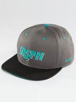 TrueSpin Snapback Caps Team TRSPN grå