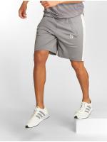 Beyond Limits Shorts Foundation grå