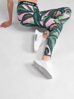 adidas originals Leggings/Treggings Tight kolorowy