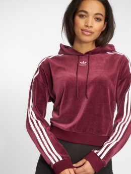 adidas originals Sweat capuche Cropped rouge