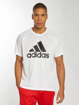 adidas originals t-shirt D2M Logo wit
