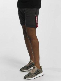 Alpha Industries shorts Kerosene grijs