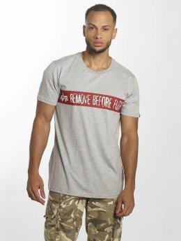 Alpha Industries T-Shirt RBF gris