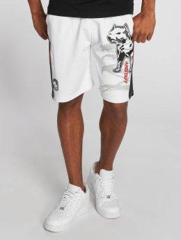 Amstaff Shorts Gerro hvit