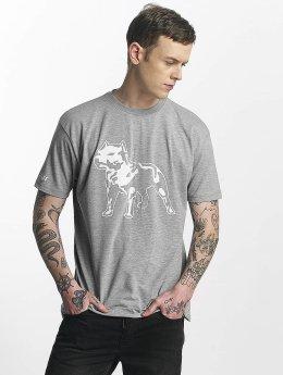 Amstaff T-Shirt Logo grey