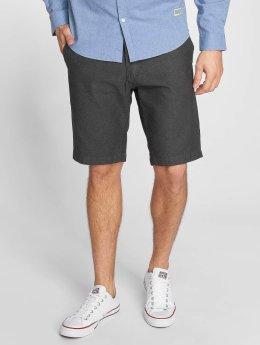 Anerkjendt Short Shorty gray