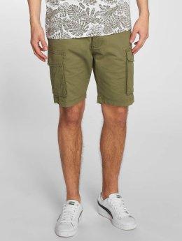 Anerkjendt shorts Seth groen