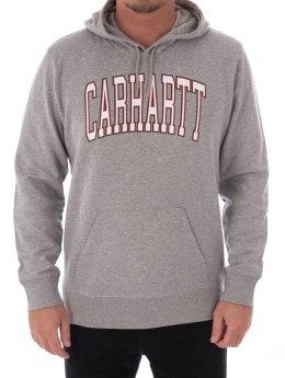 Carhartt WIP Hoody Hooded Division grau