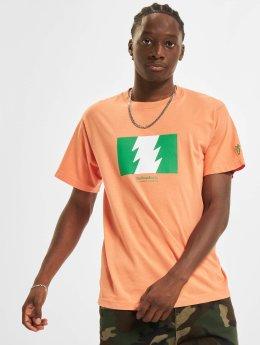 Carrots T-Shirt  orange