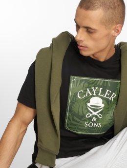 Cayler & Sons Camiseta C&s Wl Palmouflage Box negro