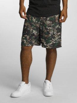 Cayler & Sons Shorts La Familia bunt