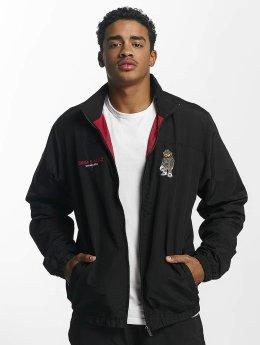 Cayler & Sons Veste mi-saison légère Siggi Sports noir