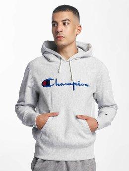 Champion Hoodie Roo grey
