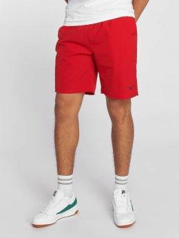 Cleptomanicx Shorts Track rot