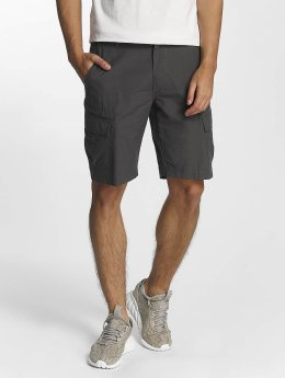 Columbia shorts Paro Valley IV grijs