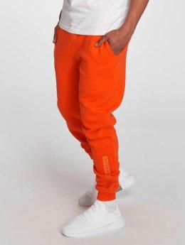 Criminal Damage tepláky Hiber oranžová