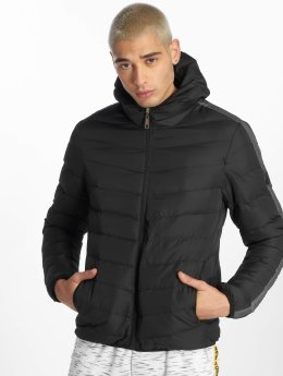 Criminal Damage Winter Jacket Mitch  grey