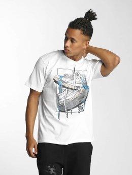 Dangerous DNGRS T-paidat Sneaker valkoinen