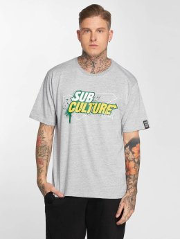 Dangerous DNGRS T-Shirt Subculture grau