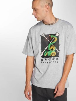 Dangerous DNGRS T-Shirt Snake grey