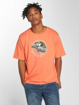 Dangerous DNGRS T-Shirt Born2Chill orange