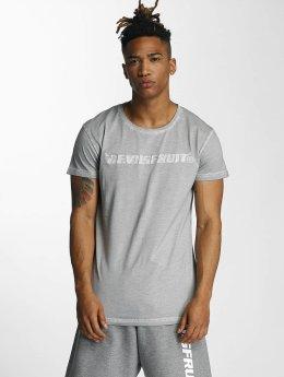 Devilsfruit T-paidat Holla harmaa