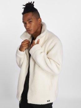 Dickies Демисезонная куртка Kegley белый