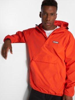 Dickies Демисезонная куртка Axton оранжевый