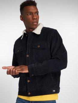 Dickies Демисезонная куртка Naruna синий