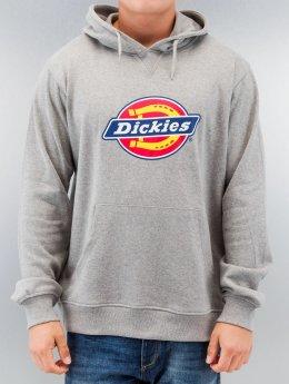 Dickies Hoodie Nevada grey
