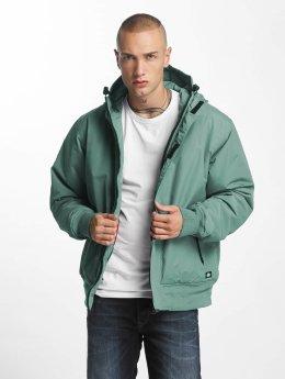 Dickies Manteau hiver Cornwell vert