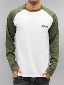 Dickies Pitkähihaiset paidat Baseball oliivi