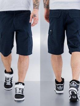 Dickies shorts New York blauw