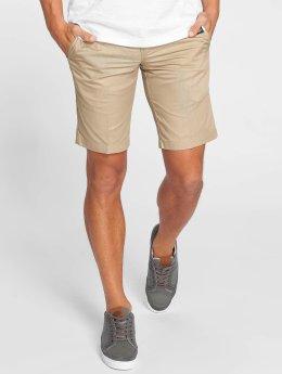 Dickies Shorts Tynan khaki