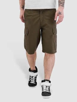 Dickies Shorts New York oliven
