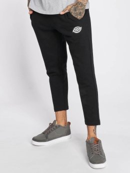 Dickies Spodnie do joggingu Apple Springs czarny