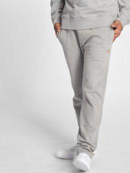 Dickies Spodnie do joggingu Elkwood szary