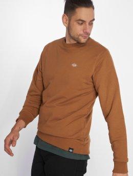 Dickies Sweat & Pull Seabrook brun