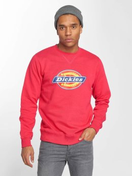 Dickies Sweat & Pull Harrison magenta