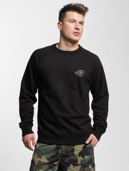 Dickies Sweat & Pull Briggsville noir