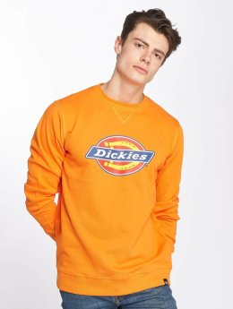 Dickies Sweat & Pull Harrison orange