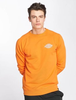 Dickies Sweat & Pull Briggsville orange